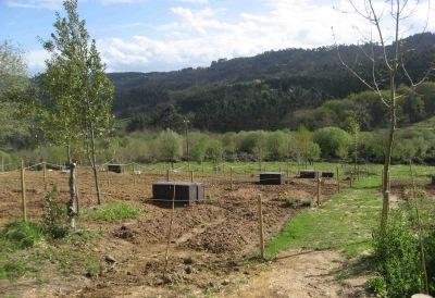 Terreno Sopelana - inicio año 2013