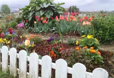 Huerta con flores