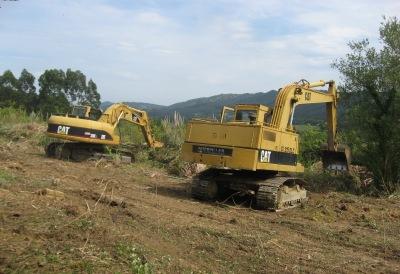 Limpieza de los terrenos de Sopelana - año 2013