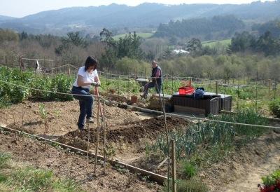 Preparación manual de los bancales para su cultivo